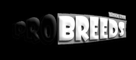 Pro Breeds logo